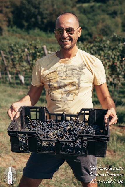 foto Evento Wine Embassy – Vendemmia @ Cantina Ongaresca 12 Settembre 2020 – – 43
