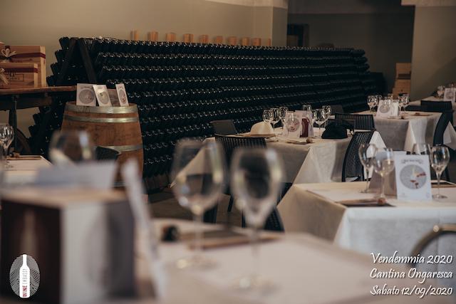 foto Evento Wine Embassy – Vendemmia @ Cantina Ongaresca 12 Settembre 2020 – – 55