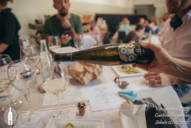 foto Evento Wine Embassy – Vendemmia @ Cantina Ongaresca 12 Settembre 2020 – – 62