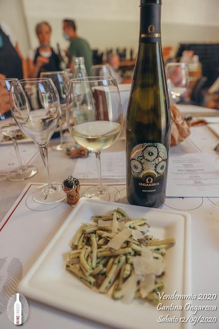 foto Evento Wine Embassy – Vendemmia @ Cantina Ongaresca 12 Settembre 2020 – – 63