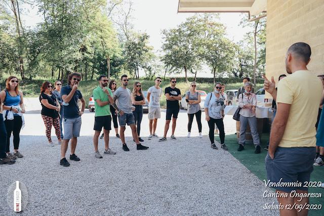 foto Evento Wine Embassy – Vendemmia @ Cantina Ongaresca 12 Settembre 2020 – – 9