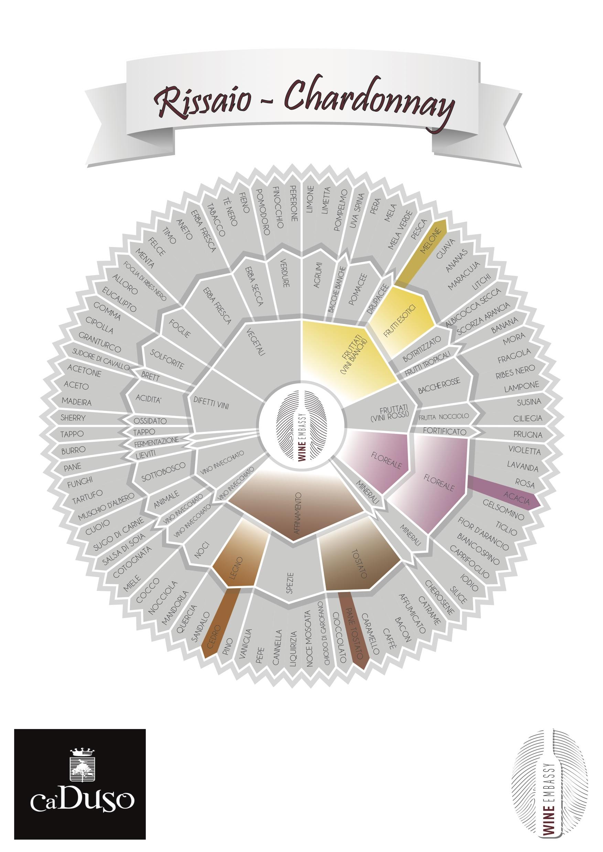 Schede Vini Evento Wine Embassy – Ca Duso – RISSAIO CHARDONNAY ITA